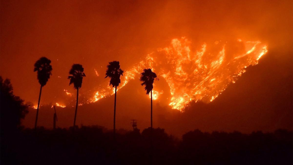 Un incendio arde miles de árboles en el Bosque Nacional de Sequoia, en California, Estados Unidos.