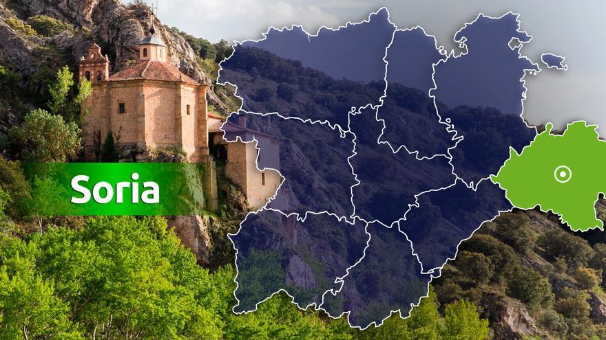 Fallece un varón por la picadura de una avispa en Molinos de Duero (Soria)