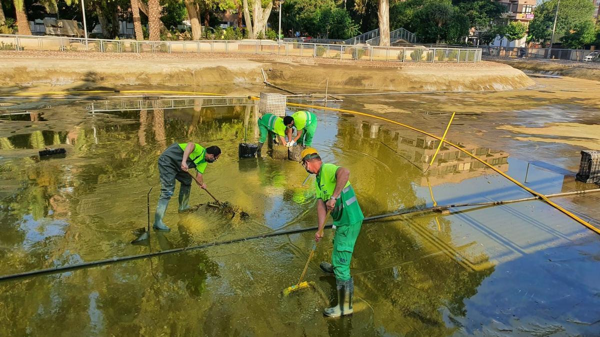 Finalizados los trabajos de vaciado, limpieza y desinfección del lago del jardín del Salitre