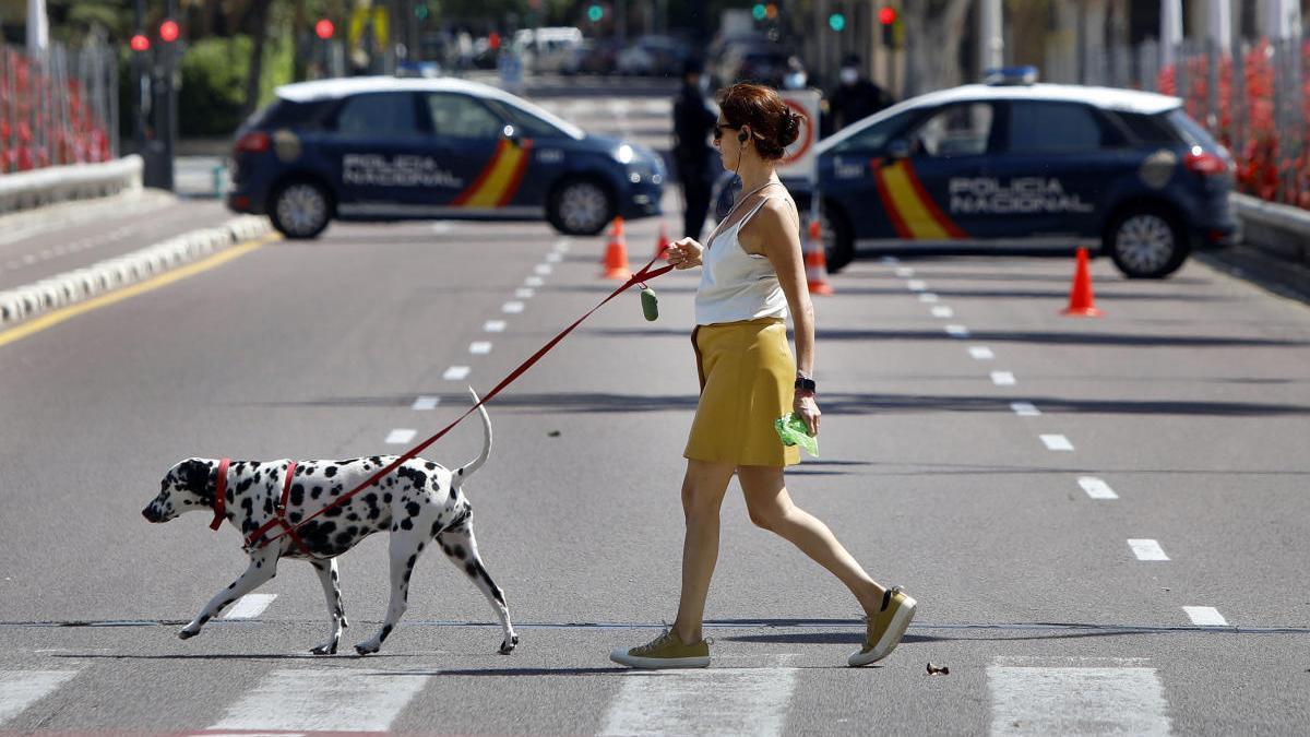 Una mujer pasea con un perro en Valencia.