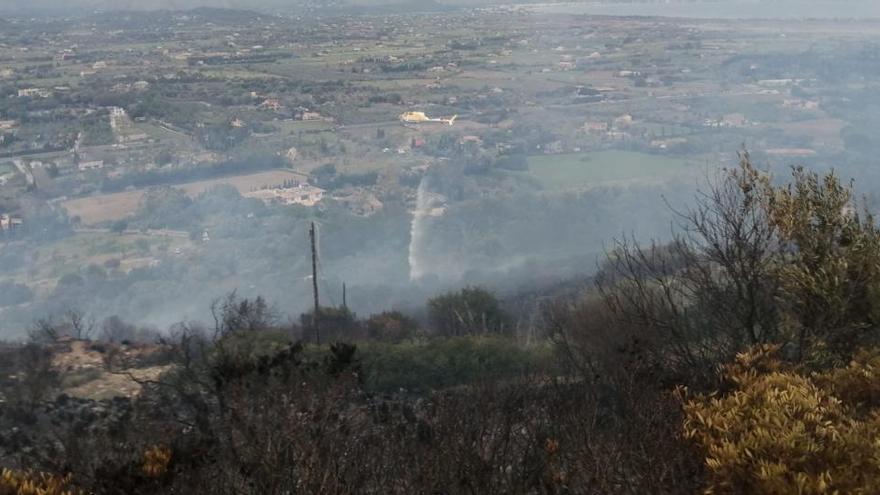 Starker Wind facht Wald- und Buschbrand bei Alcúdia an