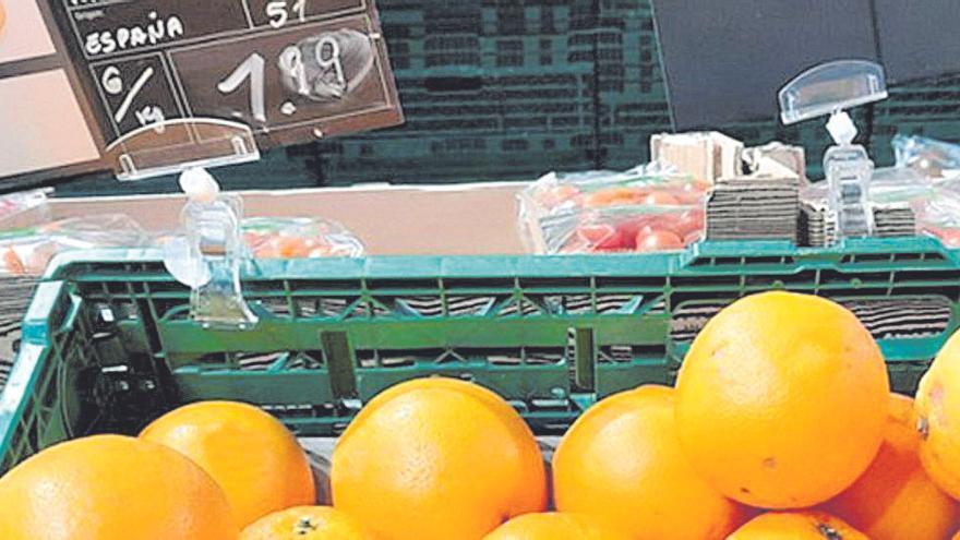 La masiva llegada de cítricos de Sudáfrica paraliza las ventas en el campo de Castellón