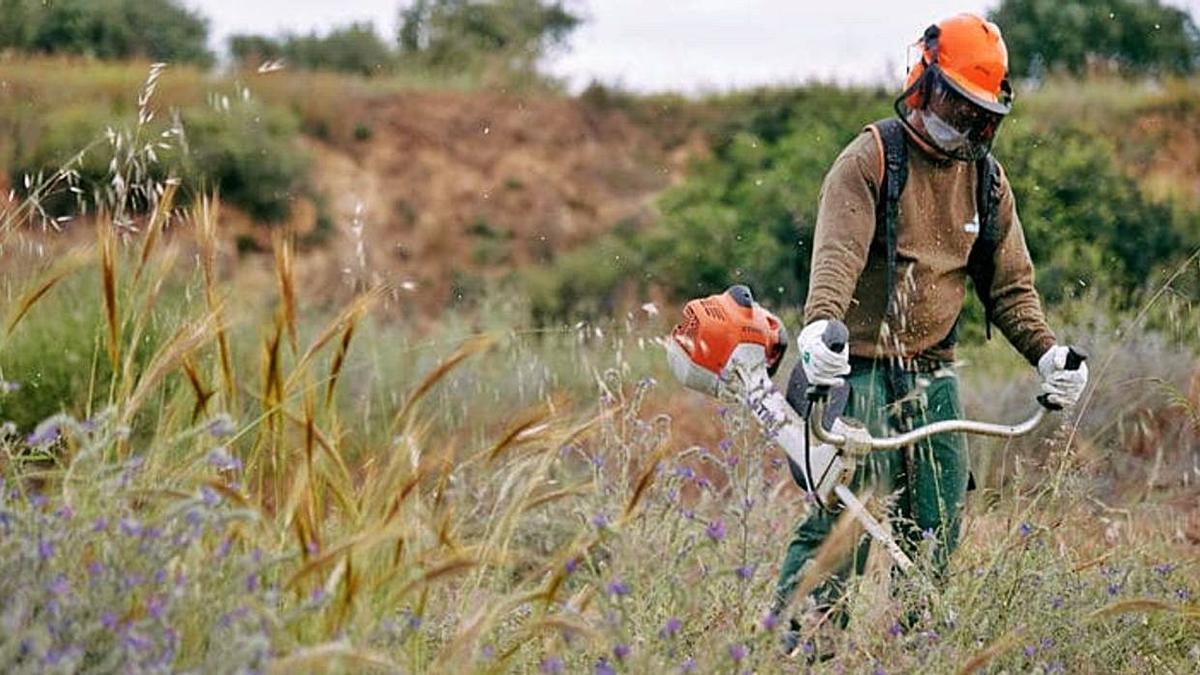 Un trabajador de Sadeco desbroza la maleza de un solar.