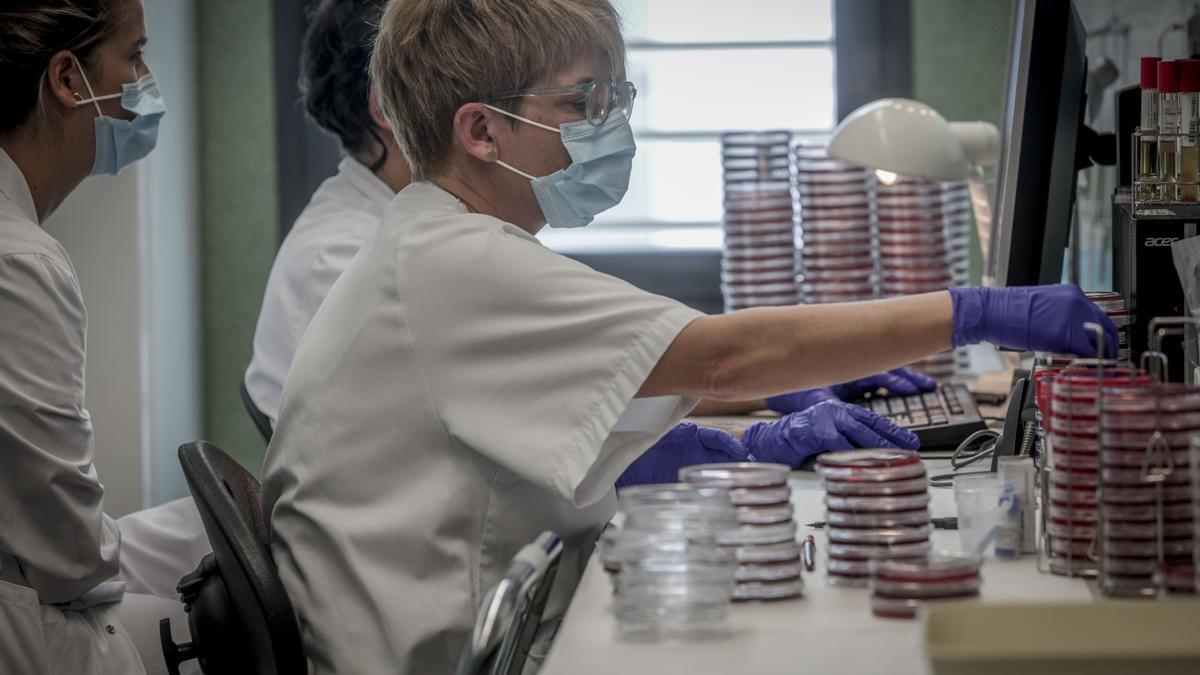 Pruebas PCR en el laboratorio de Son Espases