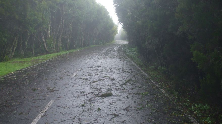 Finaliza la situación de alerta por viento en La Gomera, Gran Canaria y Lanzarote