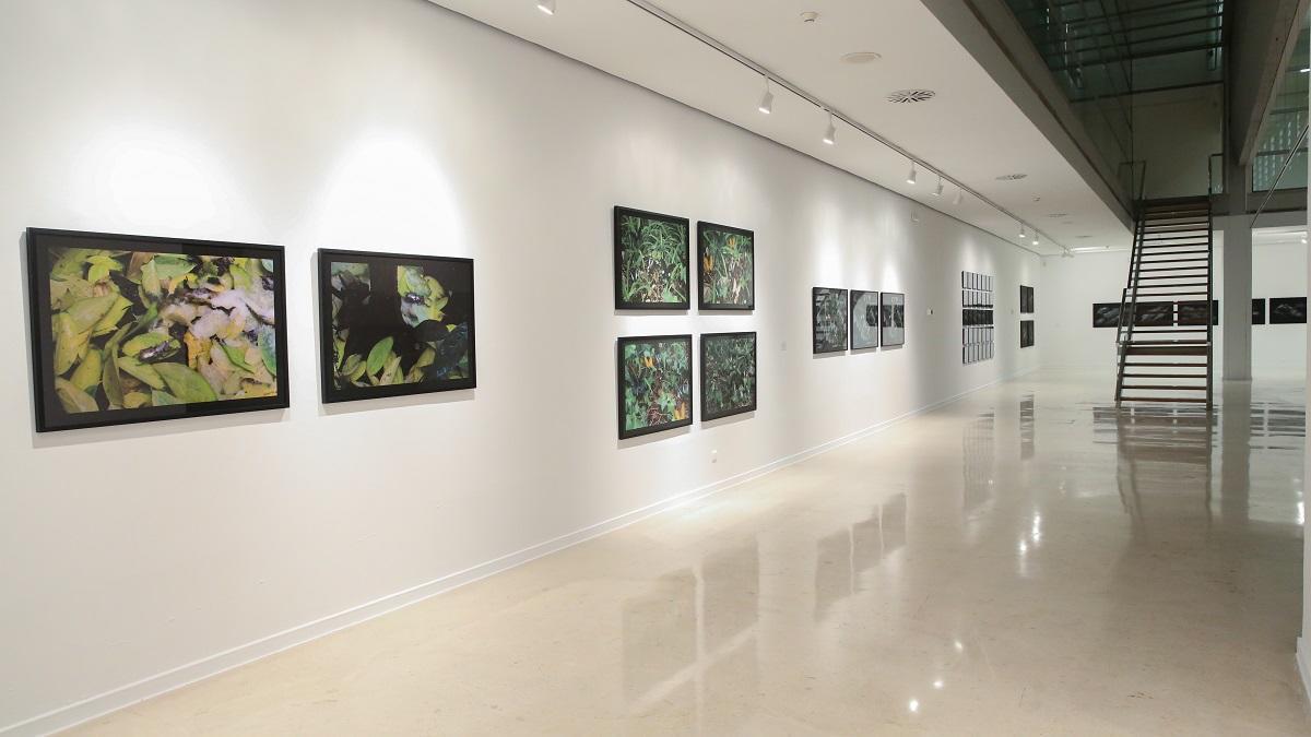 Las salas de La Coracha dan la bienvenida a las obras de la artista granadina.