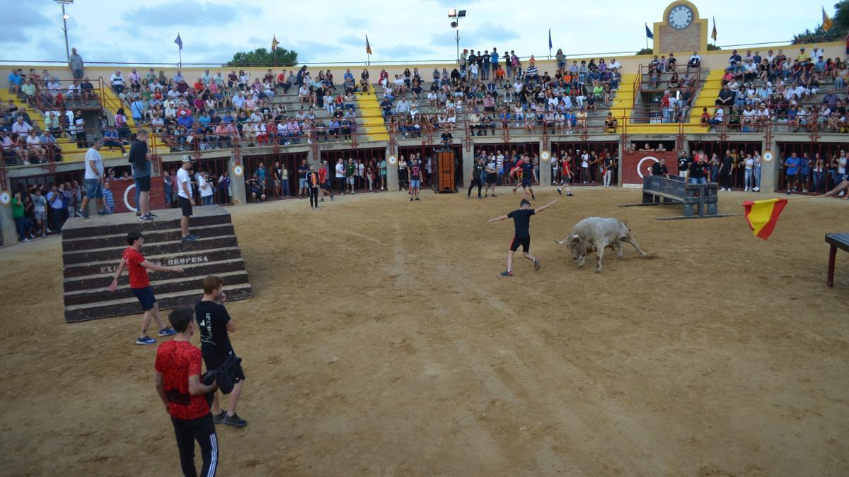 Orpesa celebrará actos en su plaza de toros cuando la Generalitat de permiso