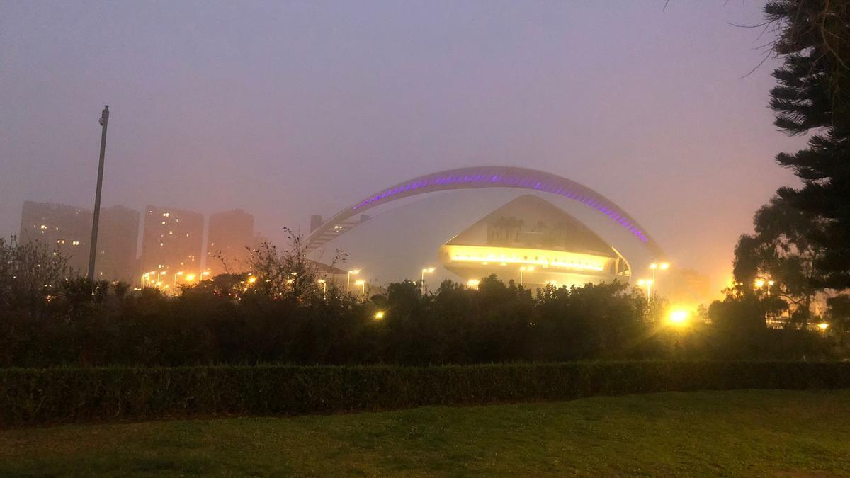 Niebla en València, en la Ciudad de las Artes y las Ciencias, en la mañana de hoy viernes.