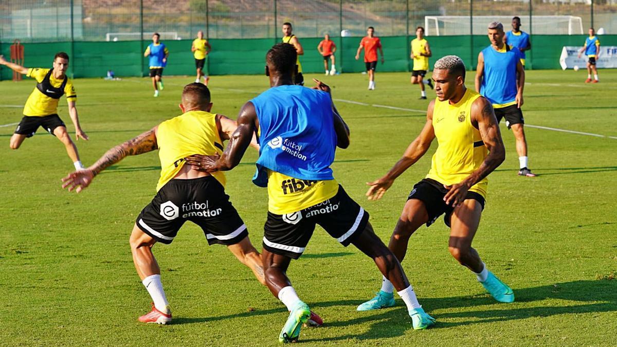 Die Proifs von Real Mallorca waren eine Woche im Trainingslager in Benidorm.