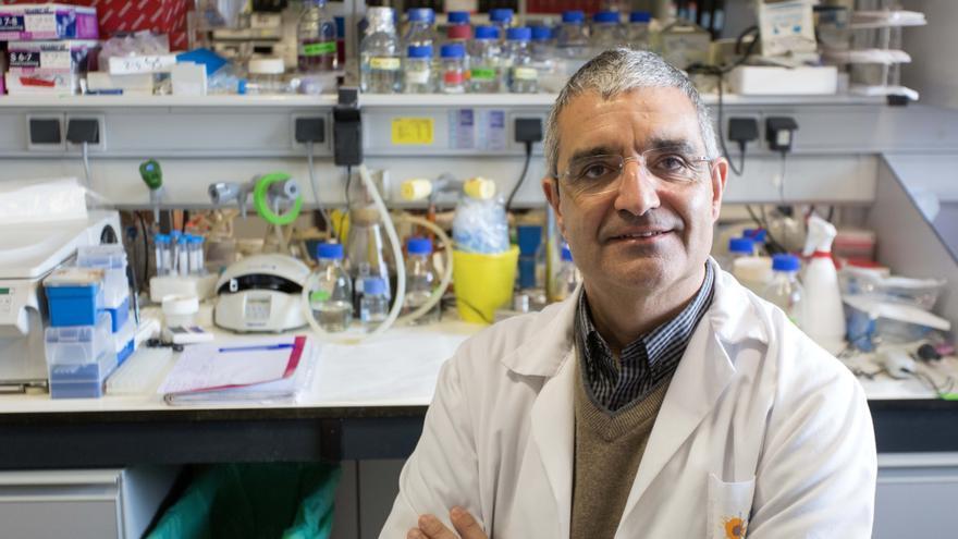Seis investigadores del CIC de Salamanca, entre los más influyentes del mundo