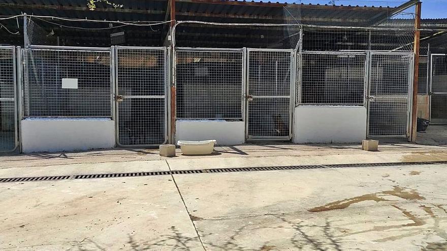 El Ayuntamiento de Cabra abrirá un nuevo centro de acogida de animales