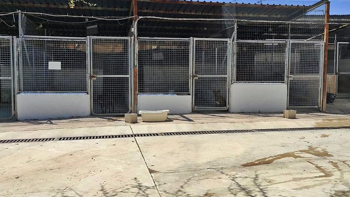 Estado que presenta actualmente el centro de acogida de animales de Cabra.