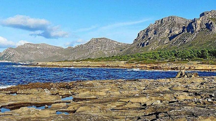 Noch mehr Kritik an Plänen für Mallorcas neuen Campingplatz