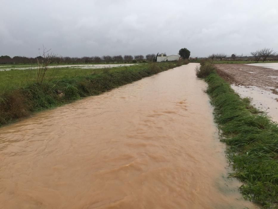 Mit am schwersten betroffen von den Überschwemmungen war am Samstag (21.1.) Porreres in der Inselmitte.