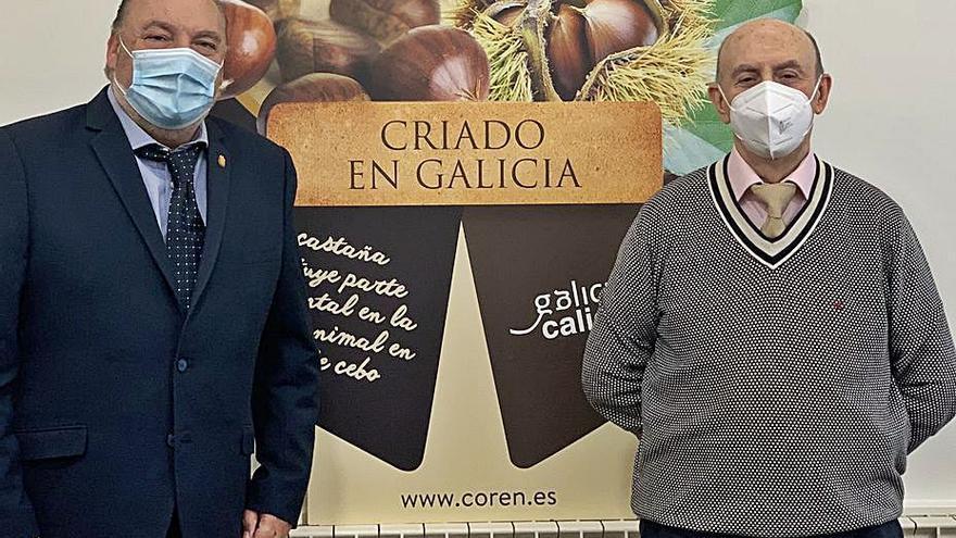 Coren aporta 7 millones de euros al campo gallego con la compra de castaña