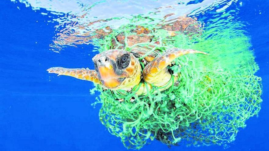 Conservar y uso sostenible de los mares y sus recursos