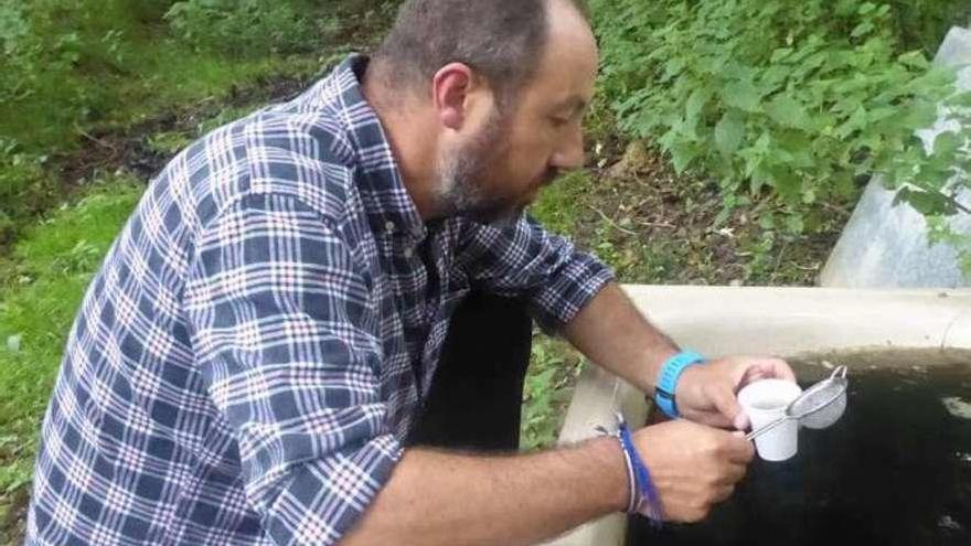 Los expertos temen que el mosquito invasor detectado en Asturias se extienda a la comunidad gallega