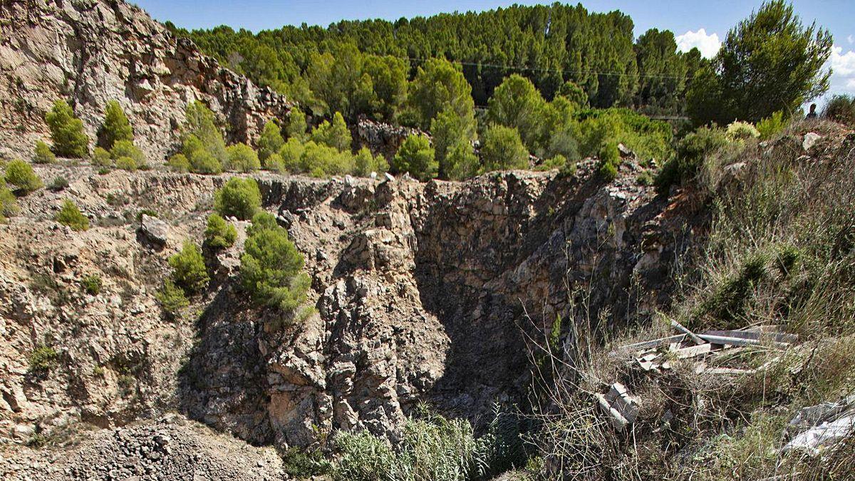 Lsa brigadas forestales iniciaron ayer el desbroce de la maleza del barranco donde podría estar el cuerpo de Marta Calvo. / Perales Iborra