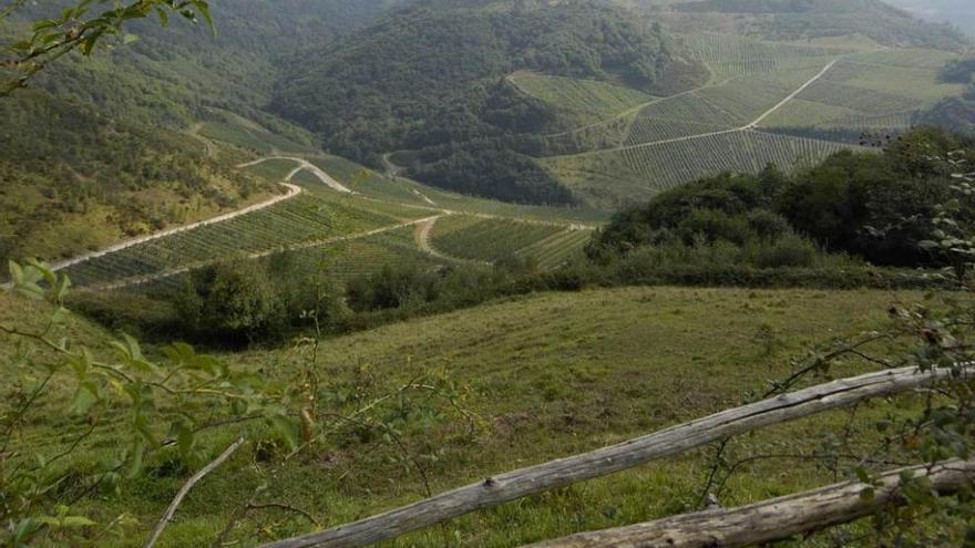 El SOMA reclama agilizar la restauración de minas