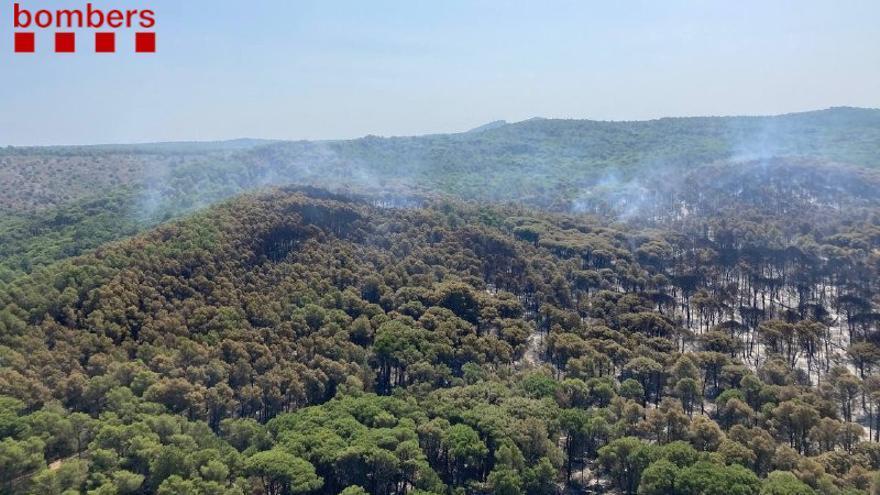 Els Bombers donen per estabilitzat l'incendi de Torroella de Montgrí