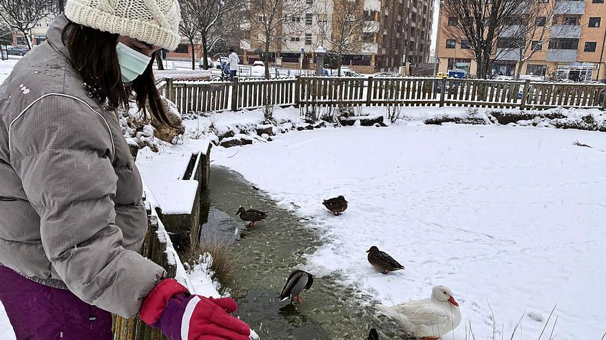 Castilla y León, en alerta por nevadas,  que podrían superar los 20 centímetros