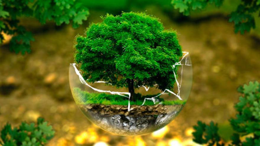Canvi climàtic: 5 propòsits per a tu i per al medi ambient