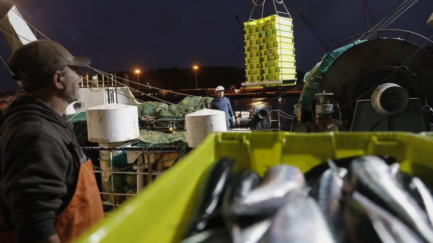 La cuota de la xarda llega al millón y medio de kilos para 170 embarcaciones