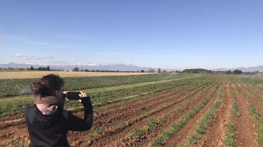 FotoDUN, una app per a enviar fotografies geoetiquetades al Departament d'Agricultura