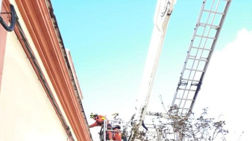 Más de 250 incidentes por el viento en la Comunitat Valenciana