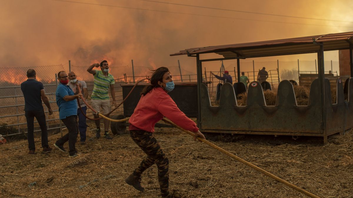 Incendio en Lober de Aliste.