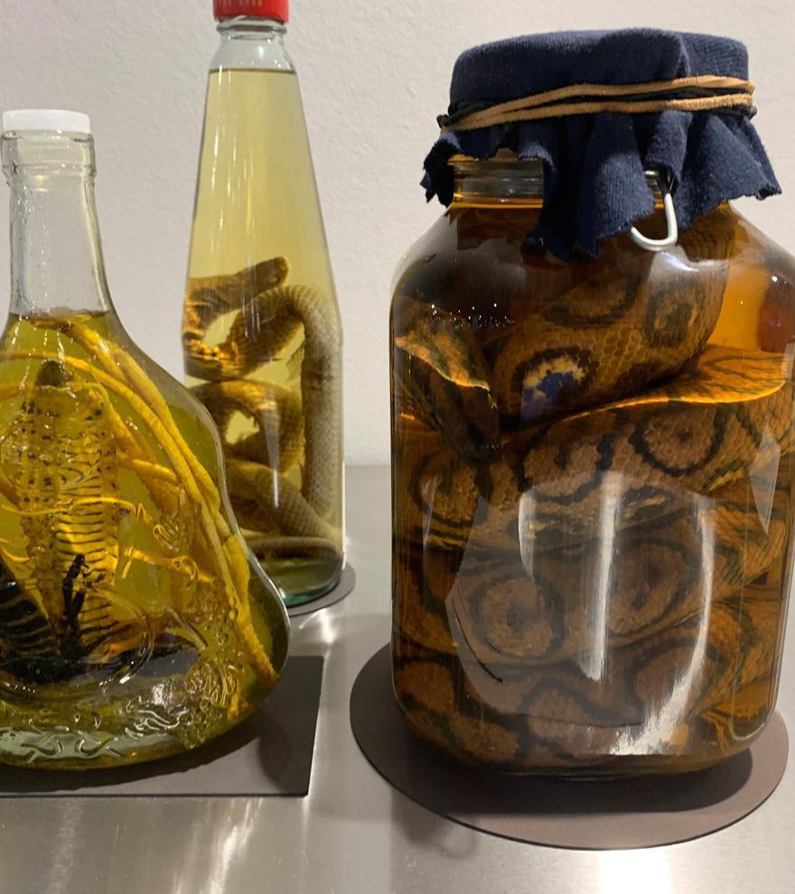Ojos de oveja y vino de serpiente: el Museo de la Comida Repugnante llega a Berlín