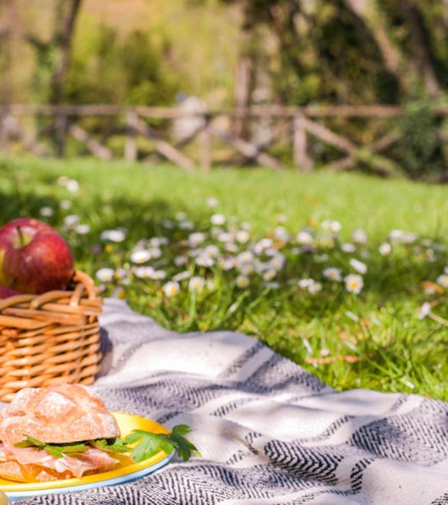 Trucos para disfrutar de un picnic saludable en vacaciones
