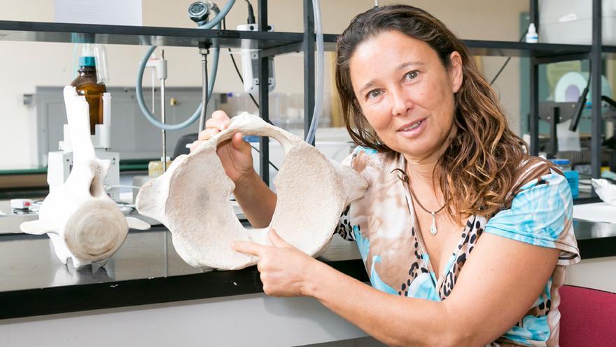 Descubren una nueva especie de cetáceo al que le ponen nombre indígena de mujer