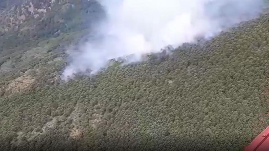 Extinguido el incendio declarado el sábado en Genalguacil