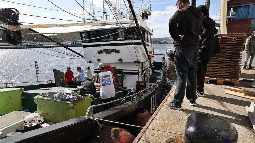 Los boniteros han consumido solo el 18% de cuota con las primeras mareas