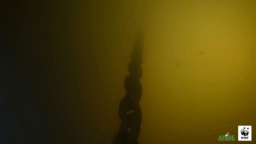 Los últimos parámetros del Mar Menor reflejan que está peor que hace un año