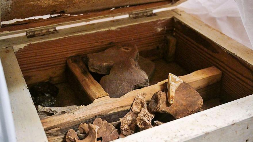 MUNA recibe 17 cajas con material arqueológico de origen guanche