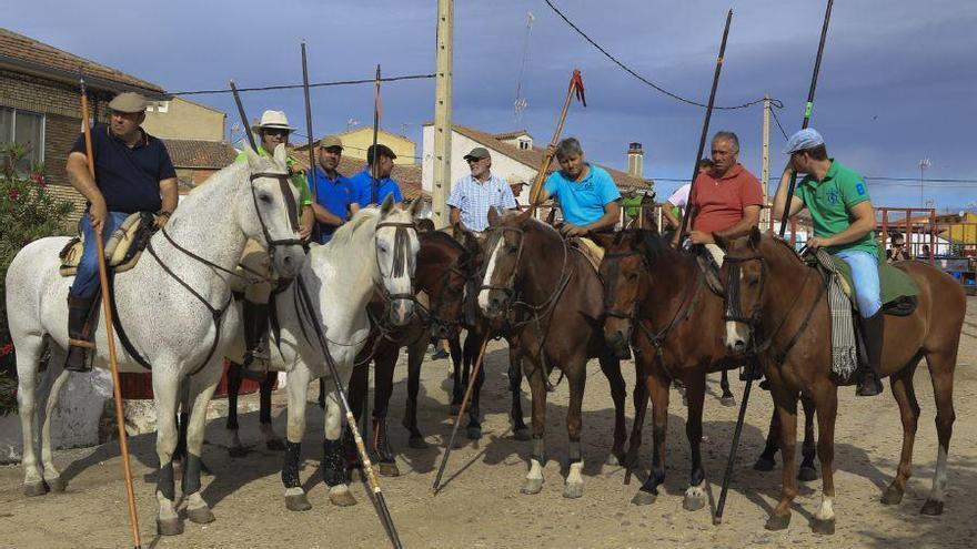 Un caballo muerto y otros tres heridos en los encierros de Guarrate