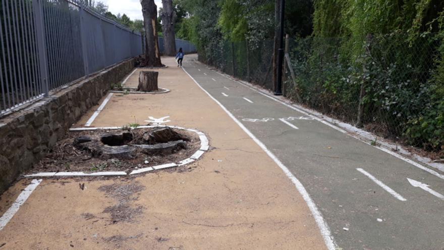 Adjudicada la reparación del carril bici de la Pradera a San Gregorio