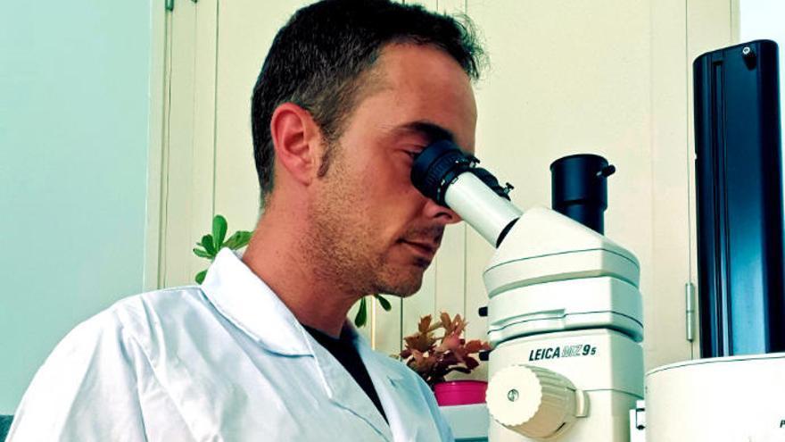 El biólogo marino Alejandro de Vera abre el Arona Son Atlántico