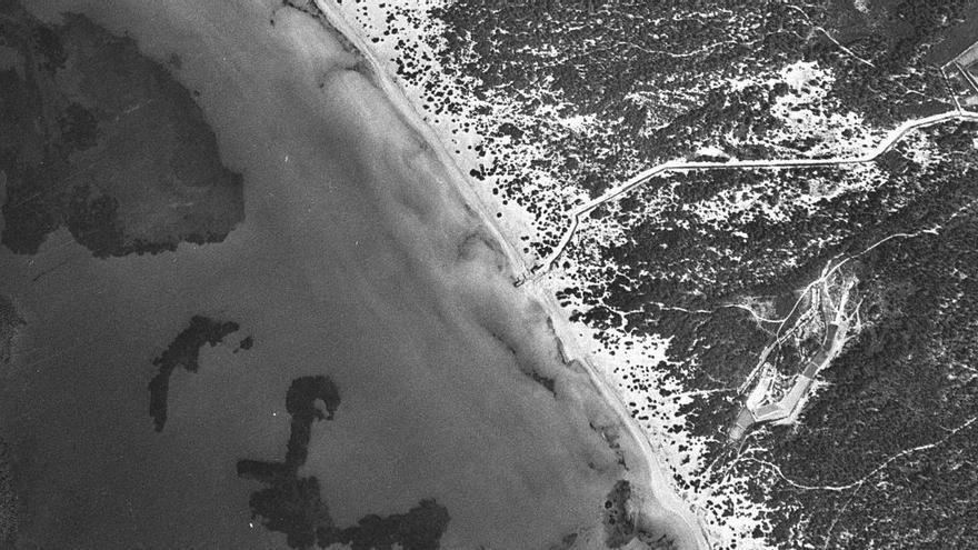 Medio Ambiente regenerará las zonas degradadas del sistema dunar de es Trenc ante el retroceso del arenal