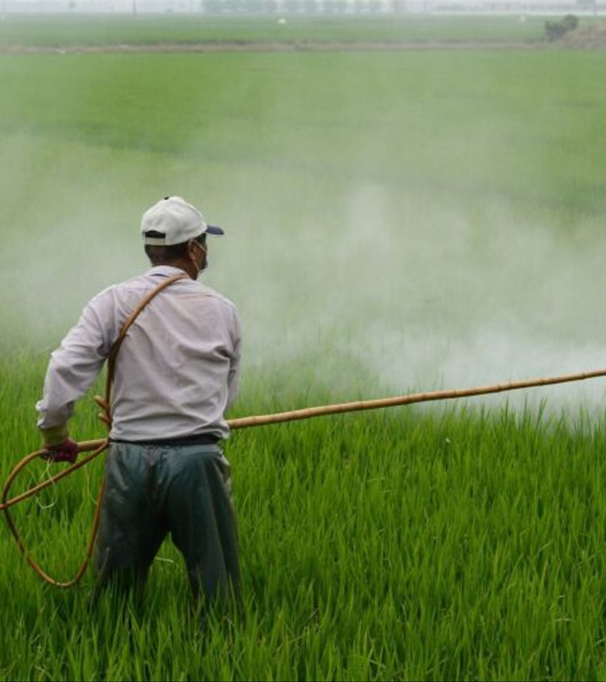 El 83% de los suelos agrícolas de España tienen restos de pesticidas