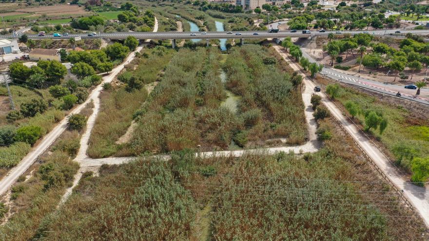 La CHS invirtió 537.000 euros en mejorar el desagüe del cauce viejo del Segura en Guardamar tras la DANA