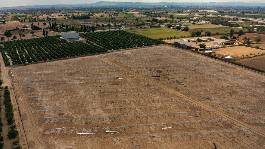 La Generalitat desautoriza construir plantas solares en la huerta inundable de la Vega Baja