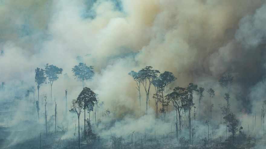 Recomiendan otorgar más derechos de propiedad indígena para proteger la selva