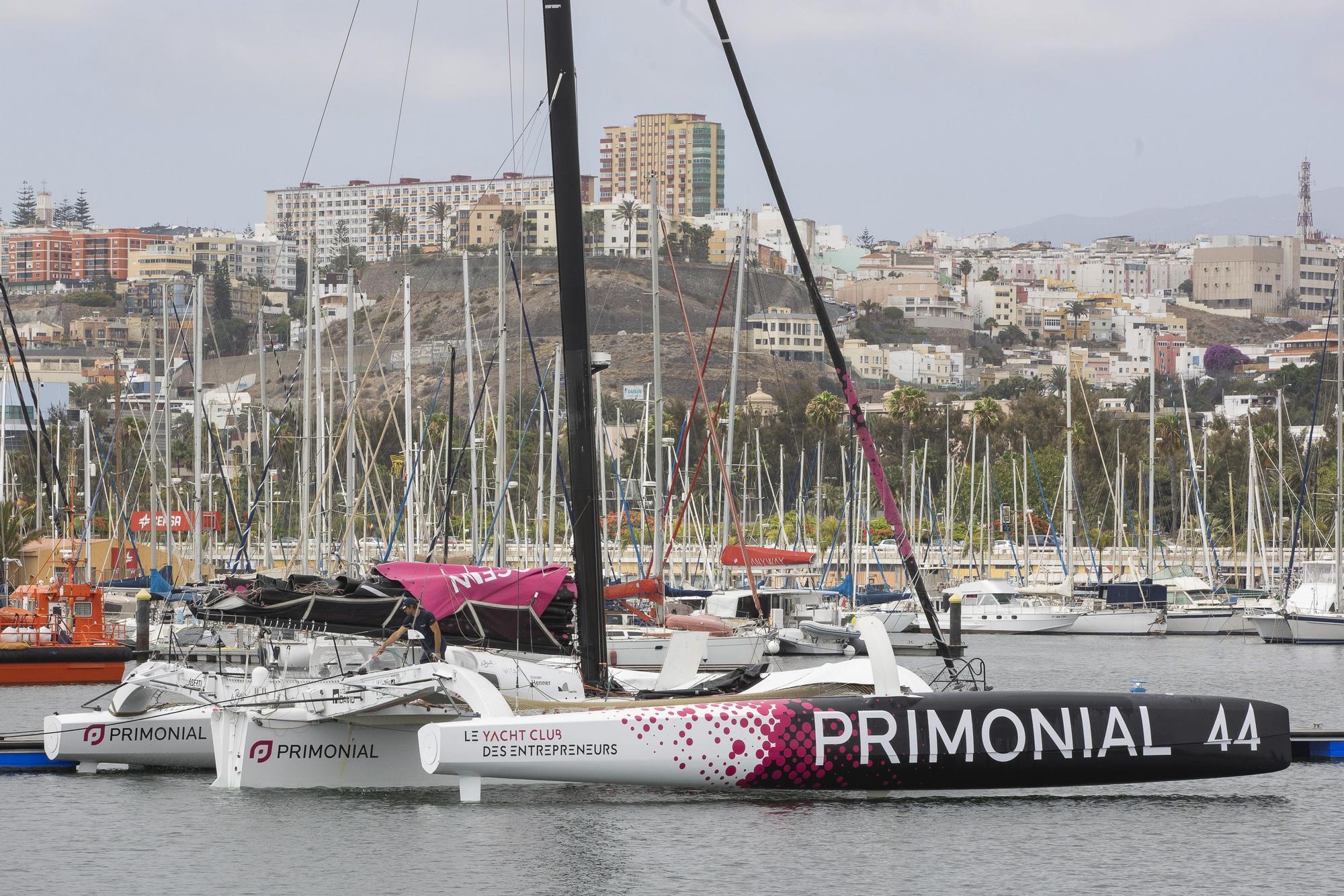 Los trimaranes del Pro Sailing Tour llegan al Muelle Deportivo