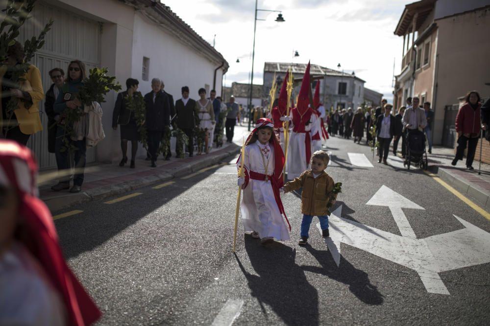 Semana Santa en la provincia 2019 | Domingo de Ram