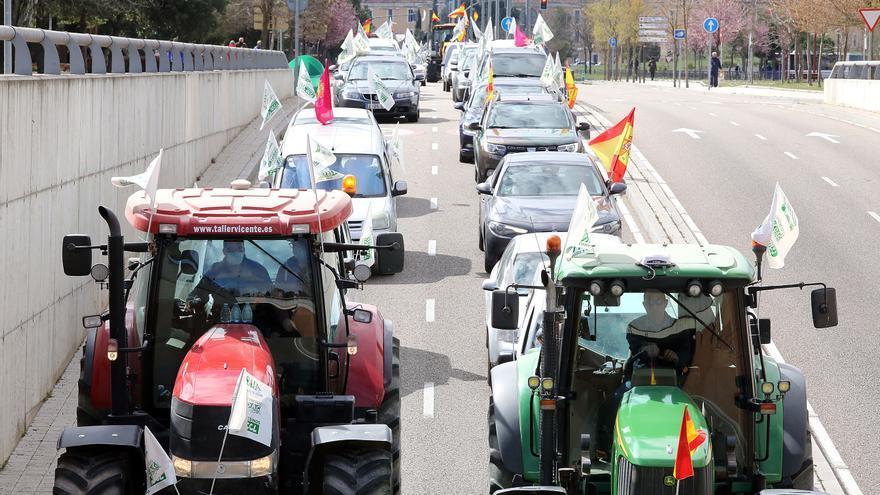 Ganaderos de Zamora protestan en Valladolid contra el blindaje del lobo