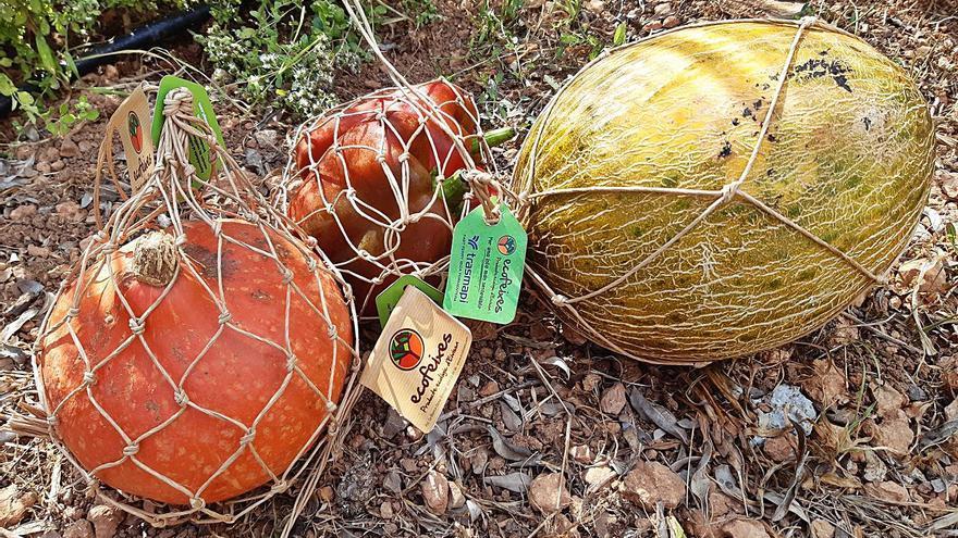 Ecofeixes lanza un envase biodegradable para facilitar el acceso a productos ecológicos