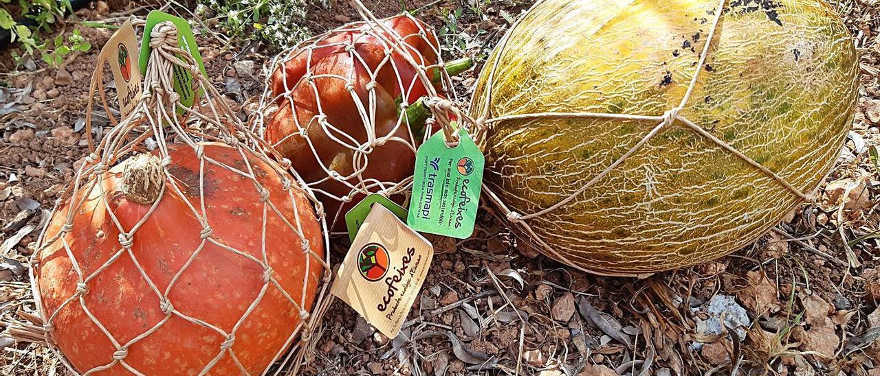 Frutas y verduras en el nuevo envase biodegradable. | ECOFEIXES